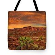 Capitol Reef National Park Utah  Tote Bag