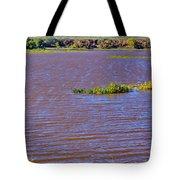 Caprock Canyon-lake Scenic Tote Bag