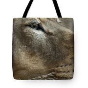 Captivating Eyes Tote Bag