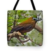 Capuchinbird Tote Bag