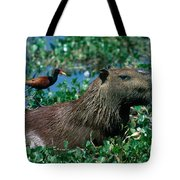 Capybara And Jacana Tote Bag by Francois Gohier