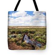 Car Door In The Desert Tote Bag
