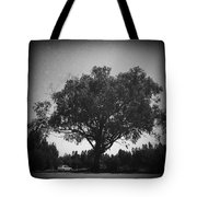 Car Parked Under A Tree Tote Bag