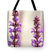Caradonna Salvia Flowers Tote Bag