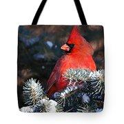 Cardinal And Evergreen Tote Bag