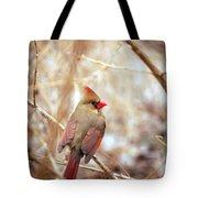 Cardinal Birds Female Tote Bag