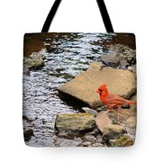 Cardinal By The Creek Tote Bag