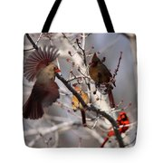 Cardinal Colony Tote Bag