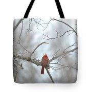 Cardinal Delight Tote Bag