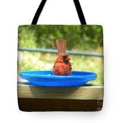 Cardinal Frisbee Tote Bag