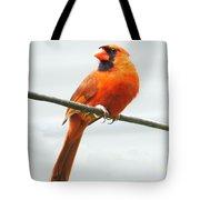 Cardinal I Tote Bag