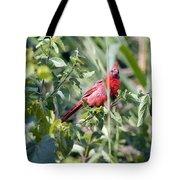 Cardinal In Bush I Tote Bag