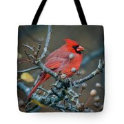 Cardinal In The Berries Tote Bag