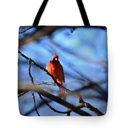 Cardinal In The Midst Tote Bag