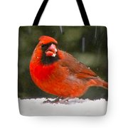 Cardinal In The Snowstorm Tote Bag
