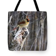 Lady Cardinal Tote Bag