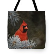 Cardinal Pictures 84 Tote Bag