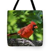 Cardinal Red Tote Bag