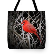 Cardinal Red With Black Tote Bag