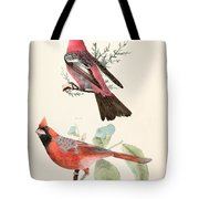 Cardinals Tote Bag by Philip Ralley