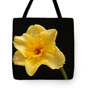 Caressed By Water Tote Bag