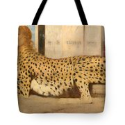 Caresses Tote Bag