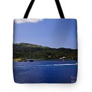 Caribbean Breeze Six Tote Bag