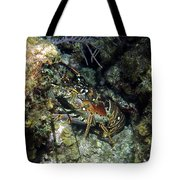 Caribbean Reef Lobster On Night Dive Tote Bag