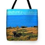 Caribbean Sea Tote Bag