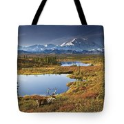 Caribou On Tundra In Denali Tote Bag