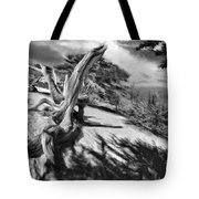Carmel Beach City Park Black And White Tote Bag