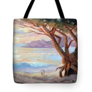 Carmel Beach Winter Sunset Tote Bag