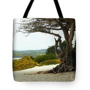 Carmel California Beach Tote Bag