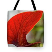 Carnivorous Plants 2 Tote Bag