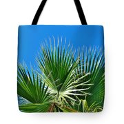 Carolina Blue Sky 8/28 Tote Bag