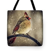 Carolina Cardinal Tote Bag