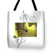 Carolina Chickadee Tote Bag