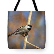 Carolina Chickadee Tote Bag