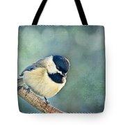 Carolina Chickadee With Decorative Frame II  Tote Bag