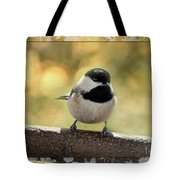 Carolina Chickadee With Decorative Frame IIi Tote Bag