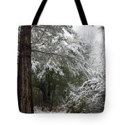 Carolina Snowfall Tote Bag