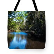 Carpenters Park 5 Tote Bag