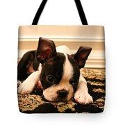 Carpet Cleaner Tote Bag