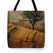 Carpet Fields Of Moravia Tote Bag