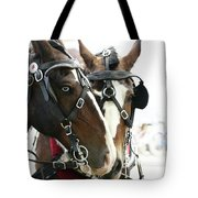 Carriage Horse - 3 Tote Bag