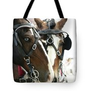 Carriage Horse - 4 Tote Bag