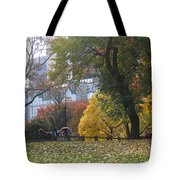 Carriage Ride Central Park In Autumn Tote Bag