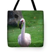 Carribean Pink Flamingo Tote Bag