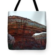 Cars Land Canyon Tote Bag