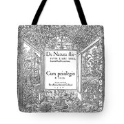 Cartouches, 1536 Tote Bag